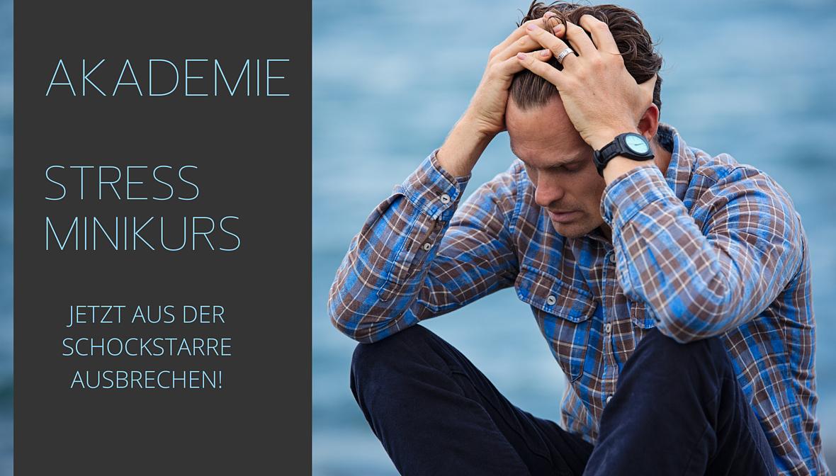 Stress-Minikurs. Jetzt aus der Schock-Starre ausbrechen. Die Expertin hilft, Hilflosigkeit zu überwinden.
